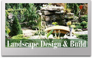 Landscape Design and Build